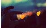 Svako srce traži oazu