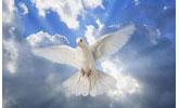 NAJAVA: Post i molitva – Pedesetnica – Pentekost, 13. – 23. svibnja 2021. godine, Hrvatska